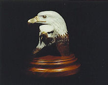 Together Forever - Bald Eagle