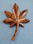 circassian walnut pin