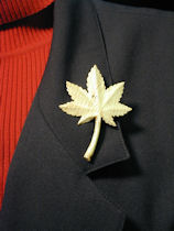 Oak Lapel Pin